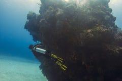 Водолаз акваланга и утес коралла Стоковые Фото