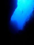 водолаз каньона стоковая фотография