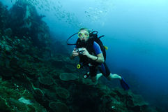 водолаз над женщиной рифа стоковое фото