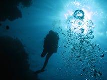 водолаз 02 Стоковое Изображение