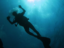 водолаз Стоковая Фотография RF