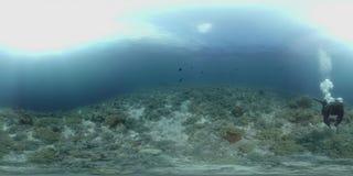 водолаз 360 vr плавает на коралловом рифе сток-видео