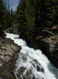 Водопады Вайоминга стоковые фотографии rf