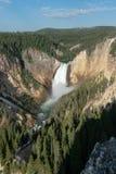Водопады в гранд-каньоне Йеллоустона стоковые фото