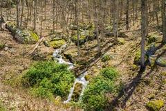 Водопады в древесинах - 2 горы каскадируя Стоковое фото RF