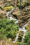 Водопады в древесинах - 3 горы каскадируя Стоковая Фотография