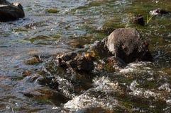 Водопады в лете Ясность и свежая вода падают вниз Подкраски зеленого, голубого и белого Серые камни внутрь Fotogr стоковые изображения