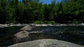 Водопады в области Квебека Laurentians сток-видео