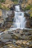 Водопады заводи путать Национальный парк яшмы альбатроса Канада стоковое изображение rf