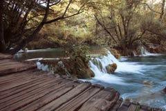 водопады и деревянная дорожка Стоковая Фотография RF