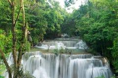 Водопады и джунгли в тропическом лесе стоковые изображения rf