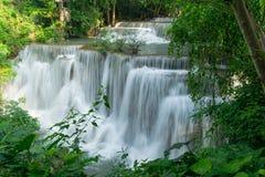 Водопады и джунгли в тропическом лесе стоковые изображения