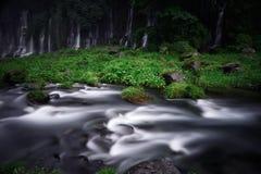 Водопады и поток Стоковые Изображения RF
