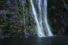 Waterfalls, cascades, rainforest, Milford Sound Стоковые Изображения RF