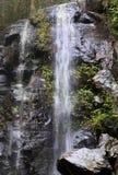 водопады Квинсленда гор bunya Стоковые Фото