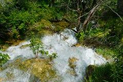 Водопады на Plitvice в Хорватии Стоковые Фото