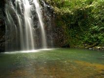 водопады ellinjaa Австралии стоковое изображение rf