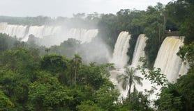 Водопады Iguazu, Аргентина, Южная Америка Стоковая Фотография RF