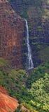 водопады waimea Гавайских островов kauai каньона Стоковые Изображения RF