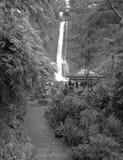 Водопад, Бали, Индонесия, Азия Стоковые Фото