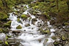 водопад вашингтона Стоковая Фотография
