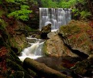 водопад весны Стоковые Фотографии RF