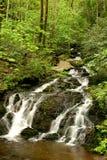 водопад весны стоковая фотография rf