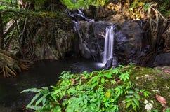 Водопад вид спереди стоковое изображение