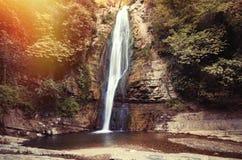 Водопад в ботанических садах стоковая фотография rf