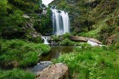 Водопад в Галиции стоковое фото