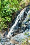 Водопад в глубоком ом-зелен тропическом лесе на реке горы Стоковые Изображения