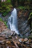Водопад в горах с лесом стоковые изображения rf