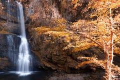 Водопад в древесинах с цветами осени стоковые фото