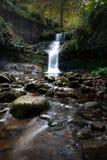 Водопад в ландшафте осени стоковое изображение rf