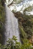 Водопад в монастыре Piedra, Сория, Испания стоковые фотографии rf