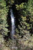 Водопад в национальном парке Jiuzhaigou Сычуань Китая Стоковое Фото