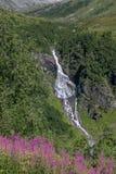 Водопад в Норвегии стоковые фотографии rf
