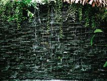 Водопад в предпосылке лист зеленого цвета воды природы сада Стоковая Фотография RF