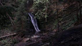 Водопад в прикарпатском лесе сток-видео
