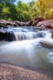 Водопад в природе стоковое изображение rf