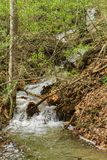 Водопад в пропуске Goshen Стоковое Изображение