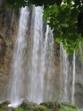 Водопад в пуще - Хорватия стоковое изображение rf