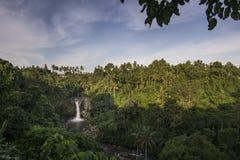 Водопад в середине джунглей на заходе солнца Стоковое Изображение
