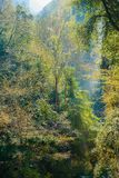 Водопад в ущелье горы стоковое изображение