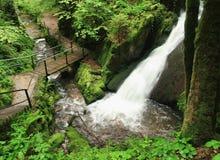 водопад горы ландшафта Стоковые Фото