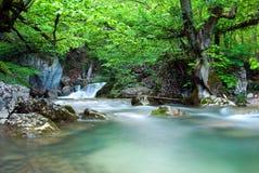 водопад гор Стоковые Фотографии RF
