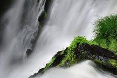 водопад детали Стоковое Изображение