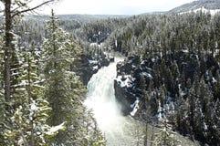 Водопад желтого камня Стоковое Изображение RF