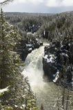 Водопад желтого камня Стоковое фото RF
