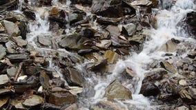 Водопад или идущий поток реки акции видеоматериалы